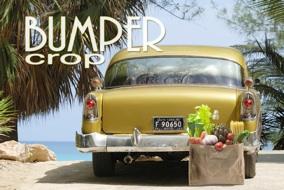 Bumper crop new